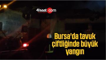 Yenişehir'de tavuk çiftliğinde yangın: 1500 tavuk telef oldu