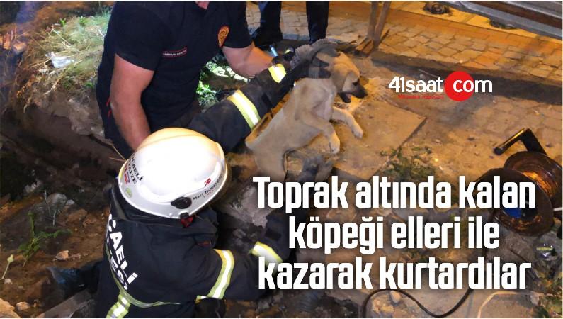 Toprak Altında Kalan Köpeği Elleri İle Kazarak Kurtardılar